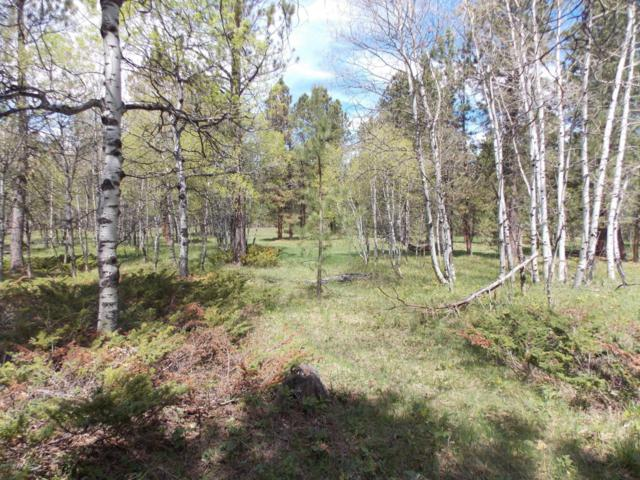 Tbd Bearlodge Ranch Rd, Sundance, WY 82729 (MLS #17-804) :: Team Properties