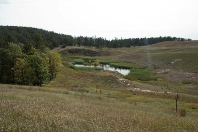 Tbd Limestone Pit Road, Sundance, WY 82729 (MLS #18-1553) :: Team Properties