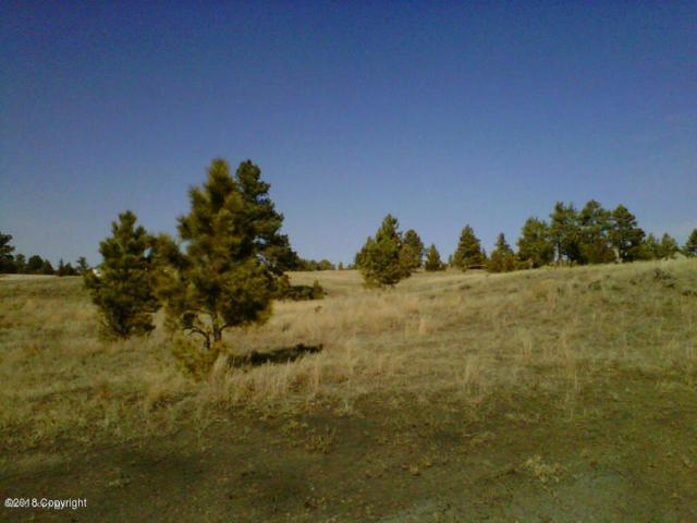 11 Big Buck Drive, Pine Haven, WY 82721 (MLS #18-437) :: Team Properties