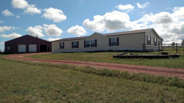 100 Duffy Rd -, Wright, WY 82732 (MLS #18-709) :: Team Properties