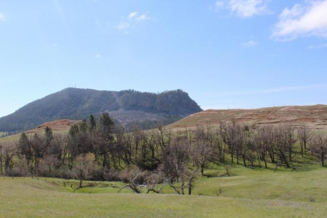 Tract H Sundance West Acreages, Sundance, WY 82729 (MLS #18-867) :: Team Properties