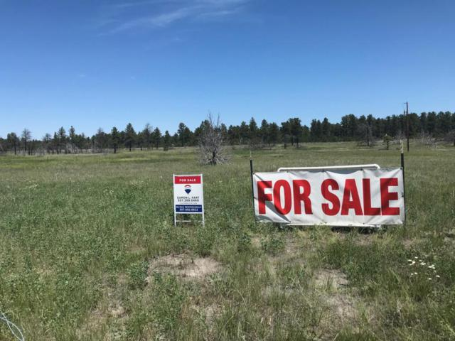 Lot 10 Ponderosa Court, Upton, WY 82730 (MLS #18-894) :: Team Properties