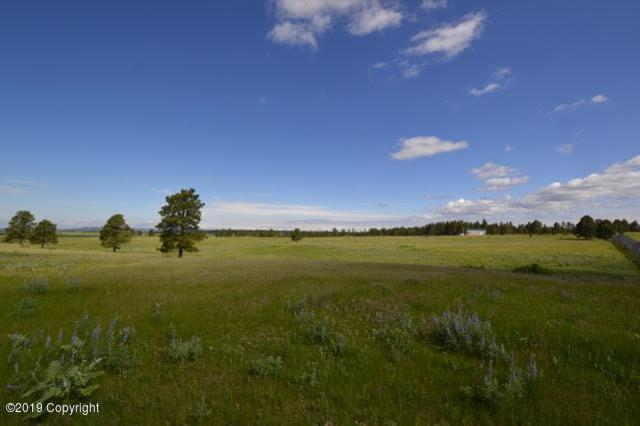 Tbd 7 Acres Hwy 85, Newcastle, WY 82701 (MLS #19-1061) :: Team Properties