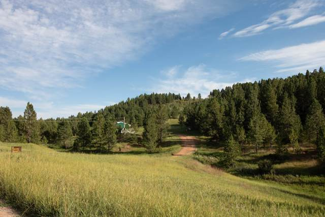 240 Green Mountain Rd, Sundance, WY 82729 (MLS #19-1385) :: The Wernsmann Team | BHHS Preferred Real Estate Group