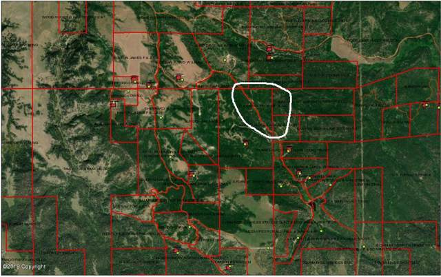 123 Middle Fork Rd, Hulett, WY 82720 (MLS #19-1642) :: 411 Properties