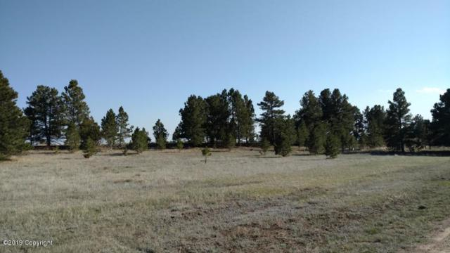 Lot 4 Stormy Height Subdivision, Newcastle, WY 82701 (MLS #19-326) :: 411 Properties