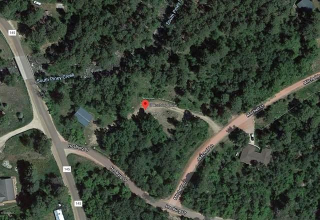 3 Hosburg Dr, Story, WY 82842 (MLS #20-1372) :: 411 Properties