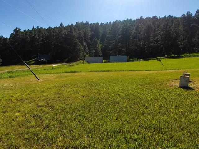 Tbd Commercial Lane, Sundance, WY 82729 (MLS #20-1458) :: Team Properties