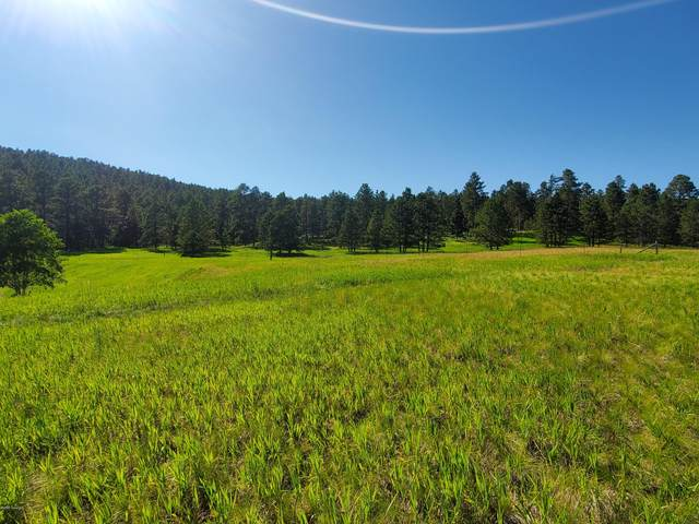 Tbd Commercial Lane -, Sundance, WY 82729 (MLS #20-1459) :: Team Properties