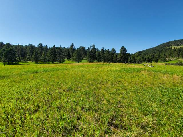 Tbd Commercial Lane, Sundance, WY 82729 (MLS #20-1460) :: Team Properties
