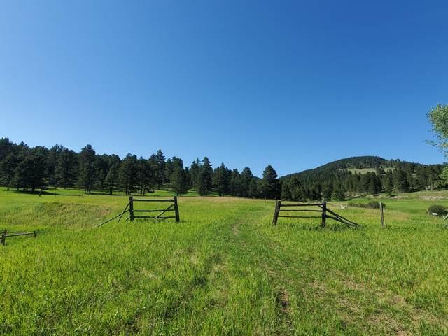 Commercial Lane, Sundance, WY 82729 (MLS #20-1464) :: 411 Properties