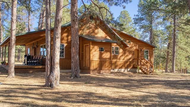 46 Kip Ridge Trail -, Sundance, WY 82729 (MLS #20-1577) :: 411 Properties