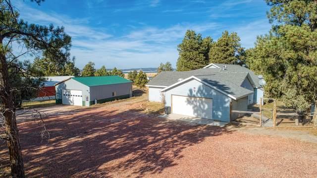 19 Deer Draw Trail -, Moorcroft, WY 82721 (MLS #20-1689) :: The Wernsmann Team | BHHS Preferred Real Estate Group