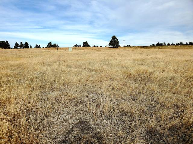 Lot 4 Stormy Heights Subdivision, Newcastle, WY 82701 (MLS #20-1744) :: 411 Properties