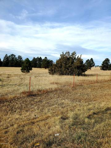 Lot 3 Stormy Heights Subdivision, Newcastle, WY 82701 (MLS #20-1745) :: 411 Properties