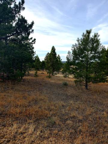 Lot 2 Stormy Heights Subdivision, Newcastle, WY 82701 (MLS #20-1746) :: 411 Properties