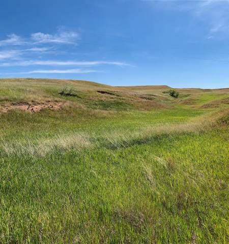 Lot 8 Government Valley Road, Sundance, WY 82729 (MLS #20-1809) :: 411 Properties