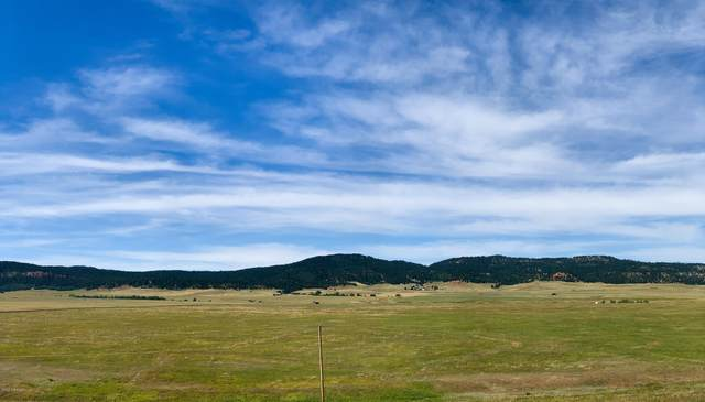 Lot 9 Government Valley Road, Sundance, WY 82729 (MLS #20-1810) :: 411 Properties