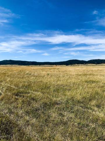 Lot 10 Government Valley Road, Sundance, WY 82729 (MLS #20-1811) :: 411 Properties