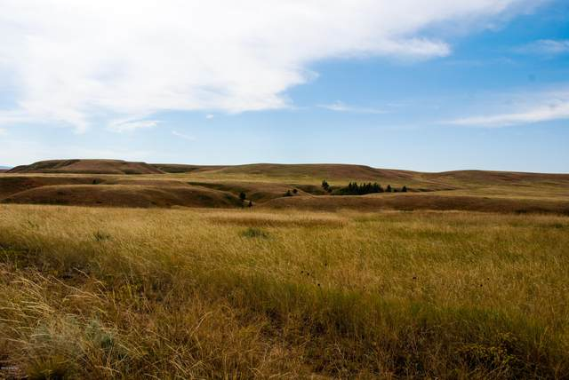 Lot 13 Redwing Lane, Sundance, WY 82729 (MLS #20-1815) :: 411 Properties