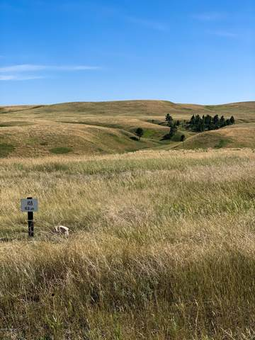 Lot 14 Redwing Lane, Sundance, WY 82729 (MLS #20-1816) :: 411 Properties