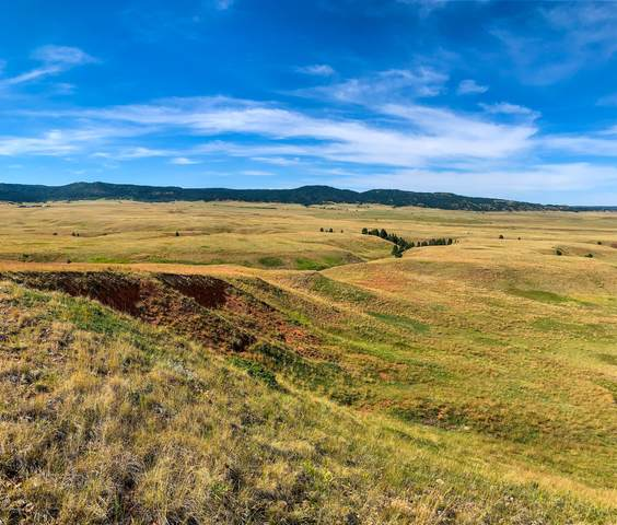 Lot 15 Redwing Lane, Sundance, WY 82729 (MLS #20-1818) :: 411 Properties