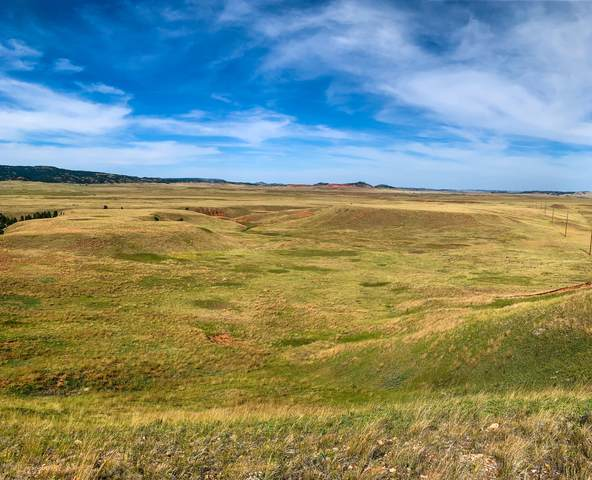 Lot 16 Redwing Lane, Sundance, WY 82729 (MLS #20-1819) :: 411 Properties