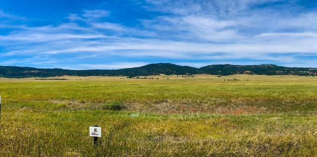 Redhawk Rn Government Valley Road, Sundance, WY 82729 (MLS #20-1820) :: 411 Properties