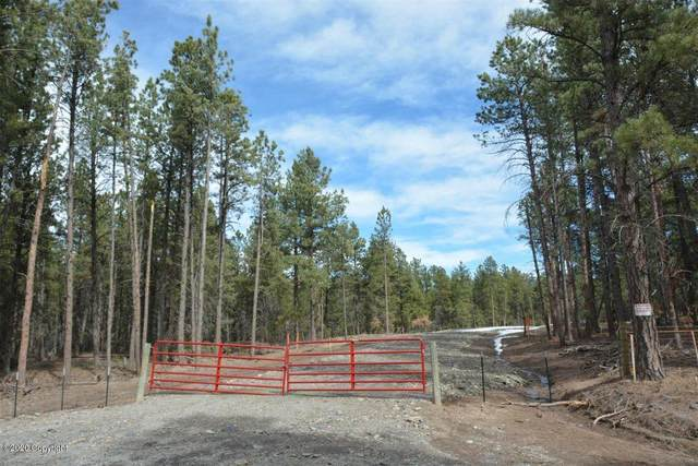 Tbd1 Bruin Rd, Hulett, WY 82720 (MLS #20-656) :: 411 Properties