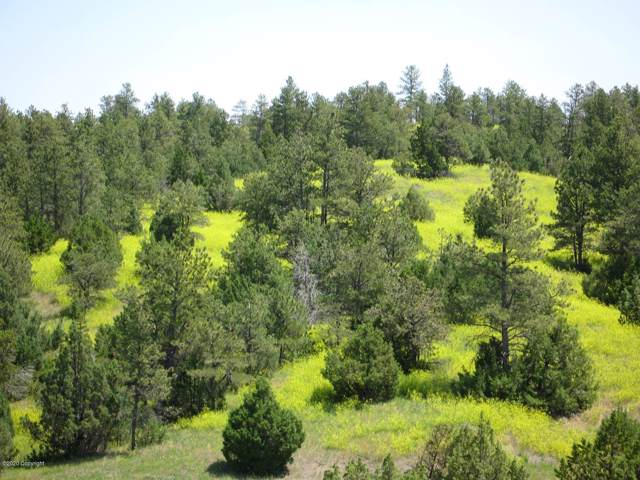 Tbd R Ranch Road, Pine Haven, WY 82721 (MLS #20-71) :: The Wernsmann Team | BHHS Preferred Real Estate Group