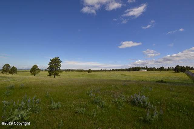 Tbd 5 Acres Hwy 85, Newcastle, WY 82701 (MLS #20-917) :: 411 Properties