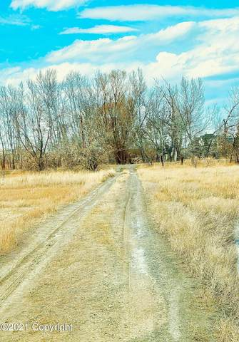 Tbd Lane 8, Powell, WY 82435 (MLS #21-1150) :: 411 Properties