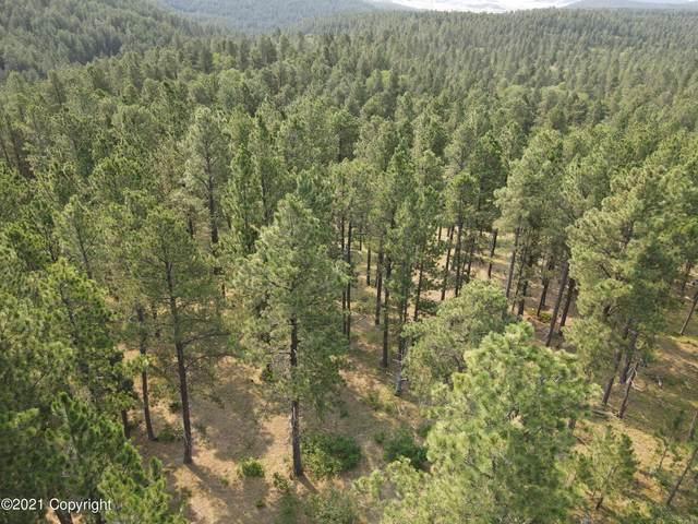 Tbd Bear Lodge Ranch Road, Sundance, WY 82729 (MLS #21-1389) :: The Wernsmann Team   BHHS Preferred Real Estate Group