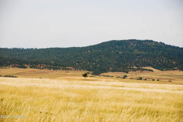 Lot 10 Government Valley Road, Sundance, WY 82729 (MLS #21-1435) :: The Wernsmann Team   BHHS Preferred Real Estate Group