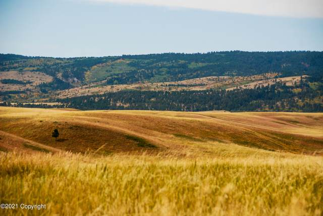 Lot 13 Government Valley Road, Sundance, WY 82729 (MLS #21-1436) :: The Wernsmann Team   BHHS Preferred Real Estate Group