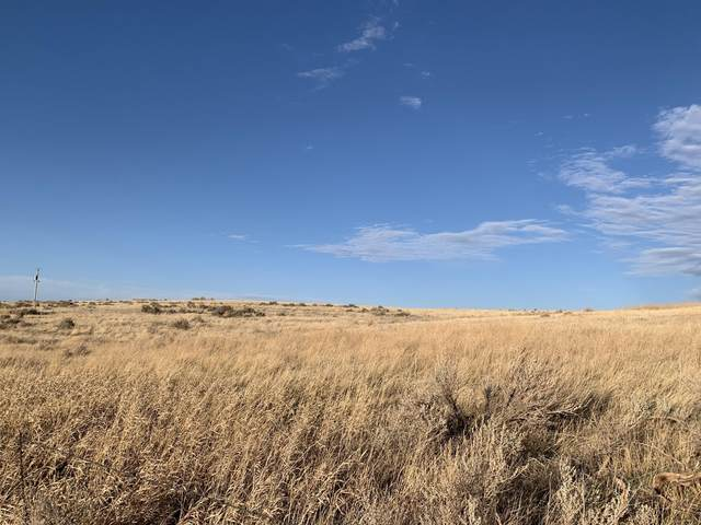 Tbd Prairie, Moorcroft, WY 82721 (MLS #21-510) :: Team Properties