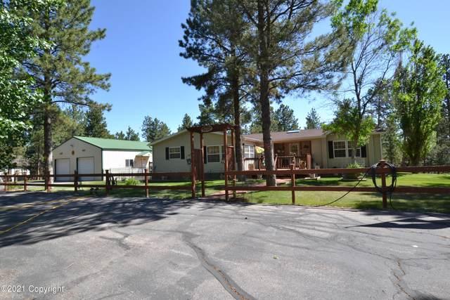69 Pine Top Dr -, Newcastle, WY 82701 (MLS #21-979) :: Team Properties