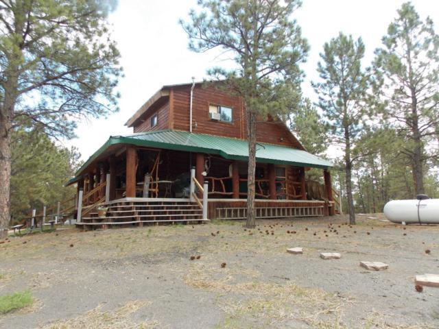 17 Aspen Lane -, Pine Haven, WY 82721 (MLS #18-219) :: Team Properties
