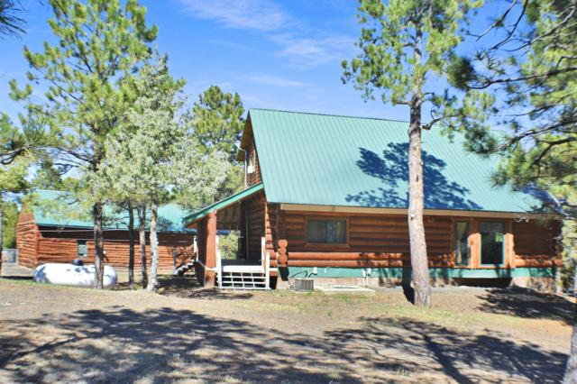 17 Aspen Ln -, Pine Haven, WY 82721 (MLS #19-617) :: The Wernsmann Team | BHHS Preferred Real Estate Group