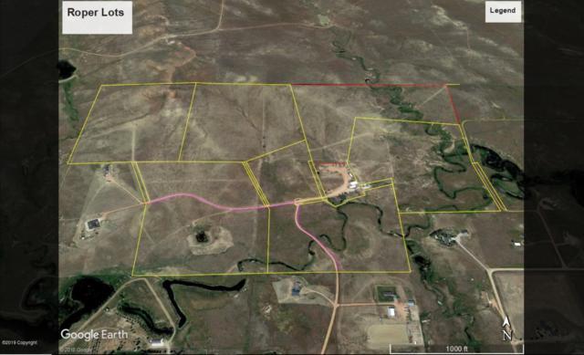 Tbd Roper, Gillette, WY 82718 (MLS #19-645) :: 411 Properties