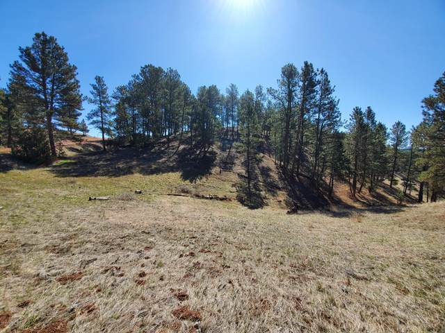 Tbd Recluse Hills Rd, Recluse, WY 82725 (MLS #20-180) :: The Wernsmann Team | BHHS Preferred Real Estate Group