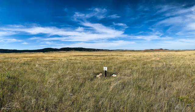 Lot 12 Redwing Lane, Sundance, WY 82729 (MLS #20-1814) :: 411 Properties