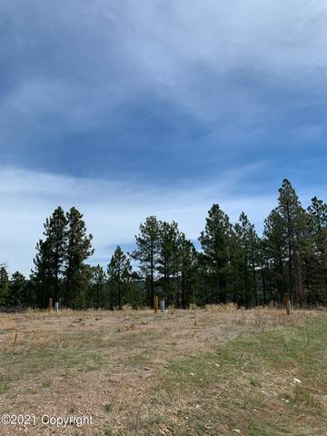 23550 Highway 85 -, Newcastle, WY 82701 (MLS #21-473) :: The Wernsmann Team | BHHS Preferred Real Estate Group