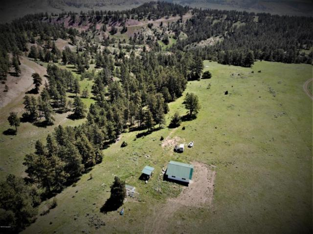 0 Hidden Hollow Dr -, Recluse, WY 82725 (MLS #18-789) :: 411 Properties