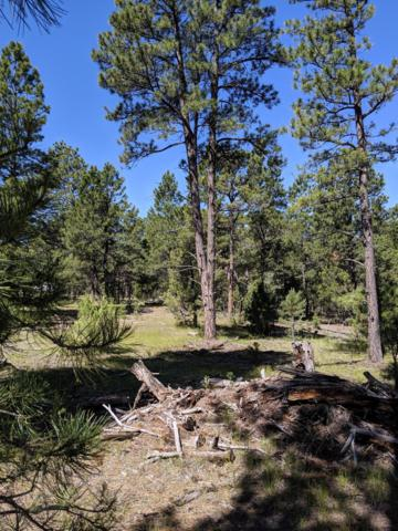 Tbd Hove Sub Ph I Lot 5, Pine Haven, WY 82721 (MLS #19-965) :: Team Properties