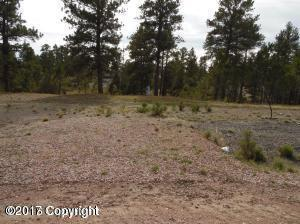 15 Whitetail, Pine Haven, WY 82721 (MLS #17-1679) :: Team Properties