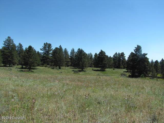 Tbd Us Hwy 85 N ~ 10.53 Acres, Newcastle, WY 82701 (MLS #19-1845) :: Team Properties