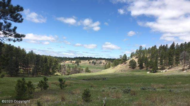 Tbd Gold Rush Trail, Sundance, WY 82729 (MLS #20-1663) :: Team Properties