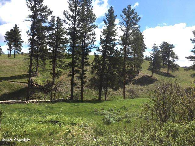 Tbd Gold Rush Trail, Sundance, WY 82729 (MLS #20-1669) :: The Wernsmann Team | BHHS Preferred Real Estate Group