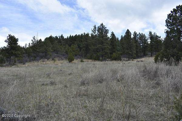Tbd   Nesw Salt Creek Rd, Newcastle, WY 82701 (MLS #20-664) :: Team Properties